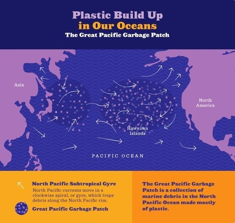The Shock Of Our Plastic Oceans: An Infographic | De wereld in overgang | Scoop.it