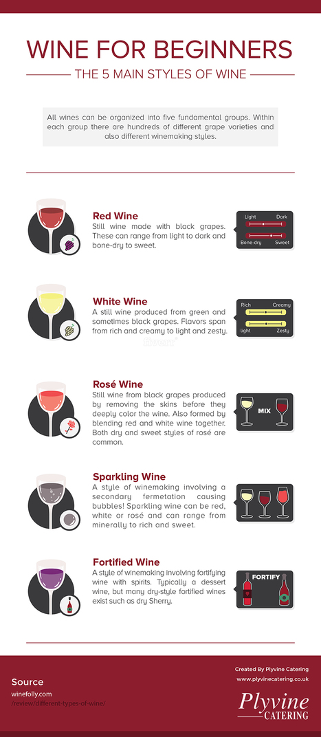 Wine for Beginners -  The 5 Main Styles of Wine | ferelrew | Scoop.it