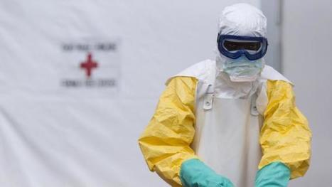 Experts denounce WHO's slow Ebola response | Medical GIS Guide | Scoop.it