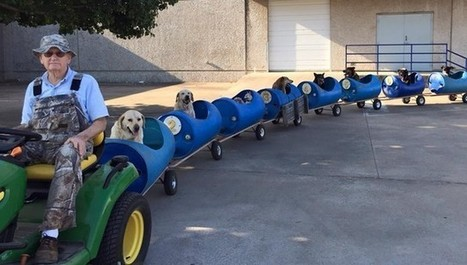 Man Builds 'Dog Train' To Take Rescued Pups Out On Little Adventures | Nature Animals humankind | Scoop.it
