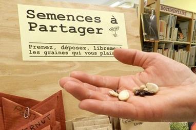 Grâce aux grainothèques, des semences libres dans toute la France | Bonheur-National-Brut | Scoop.it