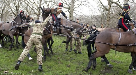 The moment an army rider is thrown from the saddle as her horse is spooked by cannon fire at ceremony to mark Queen's ascent to throne | Equestrian Vacations | Scoop.it