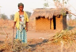 African women particularly impacted by climate change | Climate Smart Agriculture | Scoop.it