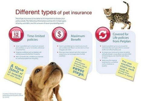 Lifetime/Time Limited Cover/Maximum Benefit | Pet Insurance | Scoop.it