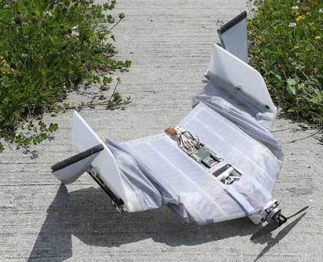 DALER : un drone inspiré des chauve-souris - Le Journal du Geek | Drôles de drones | Scoop.it