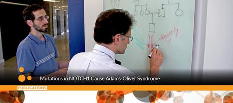 Analyzing Family Genomics Reveals New Culprit in Rare Disease | Population & Medical Genomics | Scoop.it