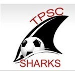 Nutrition for Soccer Players - Tiburon Peninsula Soccer Club | Soccer diet and nutrition | Scoop.it