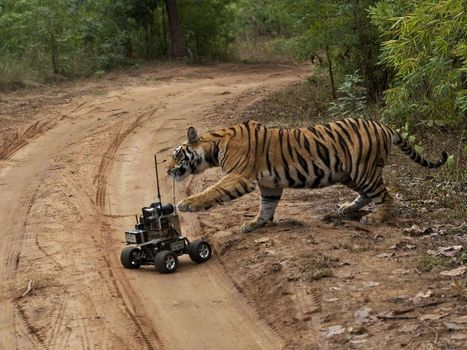 Go on Assignment for National Geographic: The Engineering ... | Mechanical Engineering | Scoop.it