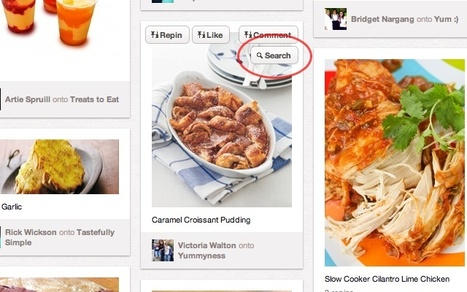 Pin Search | Image Search on Pinterest | FOOD BLOG | Scoop.it