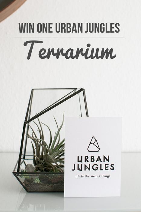 Happy Interior Blog: Giveaway: Win One Urban Jungles Terrarium   Interior Design & Decoration   Scoop.it