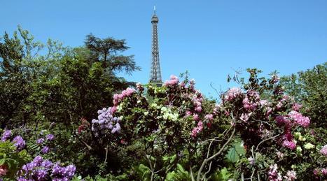 Un quart des espèces vivant en Ile-de-France sont menacées | EntomoNews | Scoop.it