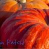 EastSide Seasonal Farm & Pumpkin Patch