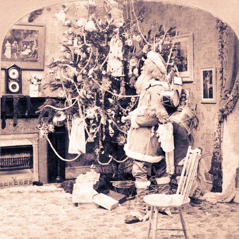 Christmas Trees and More | Christmas Trees and More | Scoop.it