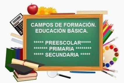 TEST DE LOS CAMPOS DE FORMACIÓN DE LA EDUCACIÓN BÁSICA.   Modelos Educativos   Scoop.it