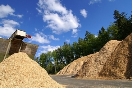 Biomass projects can overcome opposition | World Biomass Power Markets | Scoop.it