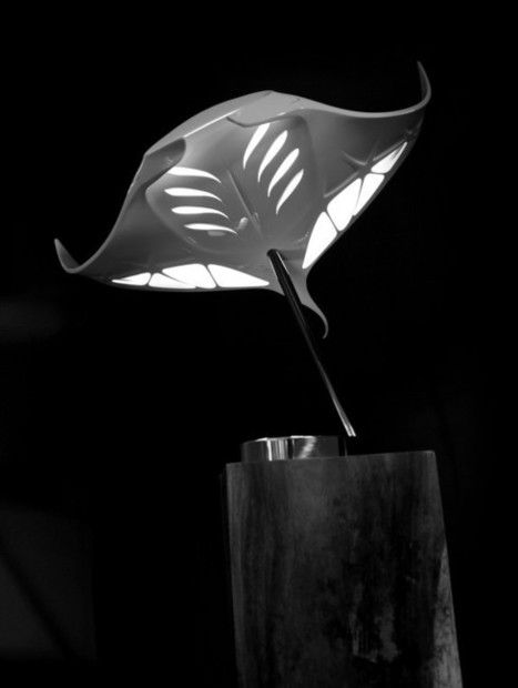 Lamp MANTA by MOVANCE x Element Design x Blossom Creative | The Curious World | Scoop.it
