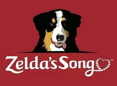 Zelda's Blog | Dogs | Scoop.it
