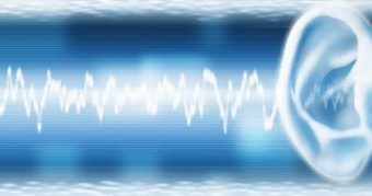 Human hearing beats the Fourier uncertainty principle | cross pond high tech | Scoop.it