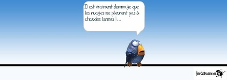 Birds Dessinés : conversing with comic strips | Tech in teaching | Scoop.it