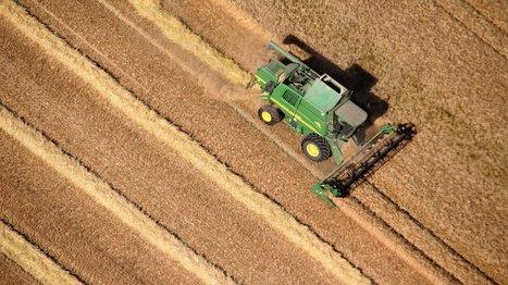 Landwirtschaft: Bundesregierung verdoppelt EU-Hilfen für Bauern | Agrarforschung | Scoop.it