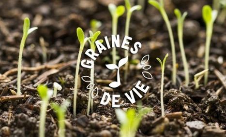 Graines de Vie : Engagez vous dans la plus belle des missions et semons ensemble les graines de l'espoir ! | Economie Responsable et Consommation Collaborative | Scoop.it