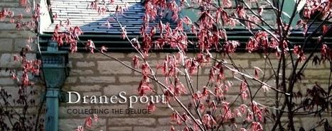 DraneSpout: Awesomest Civics Lesson du Jour CXLIII | Social Studies for Educators | Scoop.it