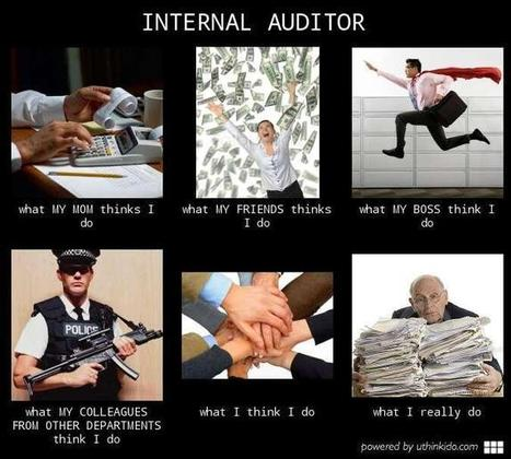 Internal Auditor | What I really do | Scoop.it