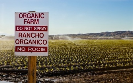 'Scientists' Say Eating Organic Food Makes You a Jerk | Botany | Scoop.it