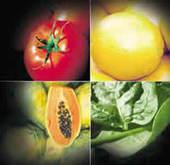 Vitaminas Hidrosolubles: Complejo B y C   hidrosolubles   Scoop.it