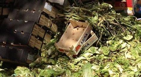 Cifras escalofriantes sobre el desperdicio de alimentos | Reputación y Responsabilidad Social Corporativa | Scoop.it