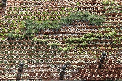 Vertical Garden at Spanish Hotel Ushüaia is a Green Air Conditioning System - Jetson Green | Wellington Aquaponics | Scoop.it