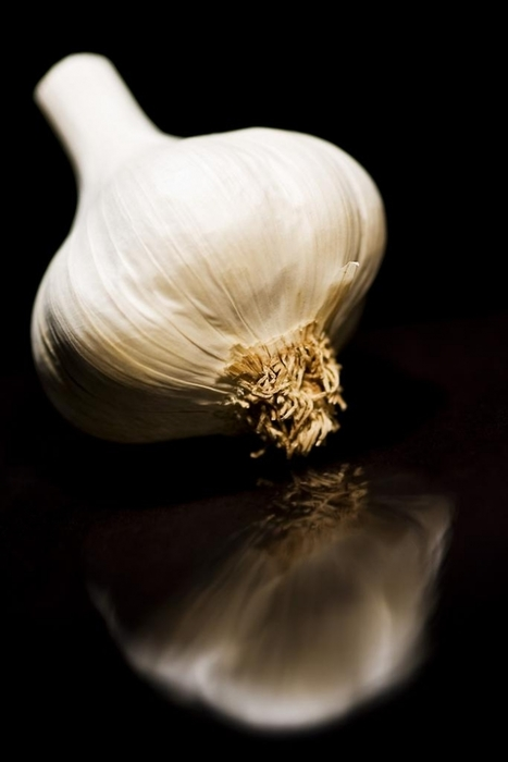 Garlic Compound is 100 Times More Effective than Antibiotics for Fighting Bacteria | Vertical Farm - Food Factory | Scoop.it