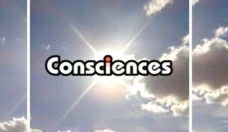 Histoire de la conscience 1/8   Fonctionnement du cerveau & états de conscience avancés   Scoop.it