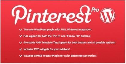 Pinterest e Wordpress i migliori plugin per condividere le vostre immagini. | il TecnoSociale | Scoop.it