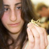- Outreach - The University of Sydney | Science Education - Secondary | Scoop.it