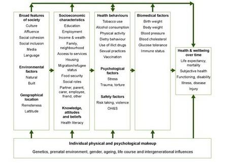 Chronic disease risk factors (AIHW) | Australian Health | Scoop.it