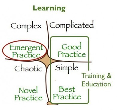 Three Principles for Net Work   Harold Jarche   Dave B's Collaboration in Organisations   Scoop.it