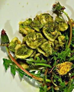 Pesto di Tarassaco | Alimentazione Naturale, EcoRicette Veg e Vegan | Scoop.it