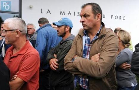 Crise du porc : les éleveurs de nouveau à Plérin - Presse Océan | Agriculture en Pays de la Loire | Scoop.it