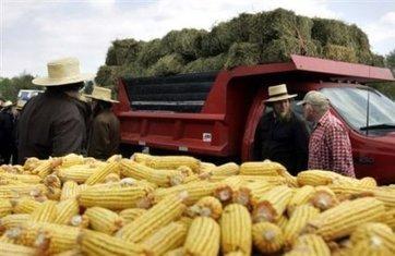 Μηχανικός Online Ειδήσεις: Οι τιμές των τροφίμων αυξάνονται, η ΕΕ αναθεωρεί το στόχο για τα βιοκαύσιμα | BiotoposChemEng | Scoop.it