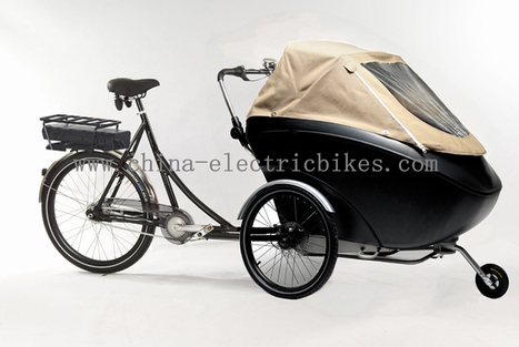 Flyhorse #Electric #Cargo #Bikes,Bike Cargo,Electric Assist #Cargo #Bike http://www.china-electricbikes.com/electric-cargo-bikes | 3 wheel tricycle | Scoop.it