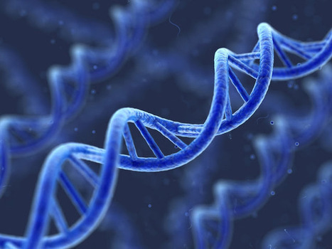 Scientists have found that memories may be passed down through generations in our DNA - ScienceGymnasium   Tomorrow's HEALTH   Scoop.it