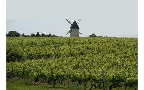 Terres agricoles, les transactions sous surveillance | S'installer en milieu rural | Scoop.it