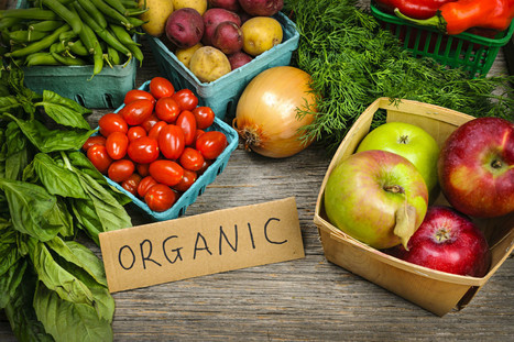 Record-Breaking Growth of Organic Industry | Organic Farming | Scoop.it