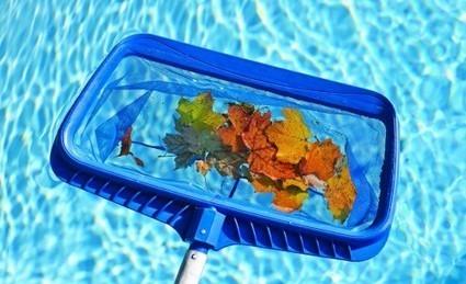 Cinco claves para tener el agua de piscina impoluta | Immobilien | Scoop.it