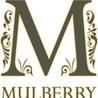 Fashion Mulberry Handbags Hot Sale
