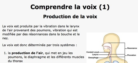 Comprendre la voix: production | formation JRI - Journaliste reporter images | Scoop.it
