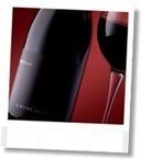 Bindelli Minardi, Fano: Organic Wines from abandoned vineyards | Wines and People | Scoop.it