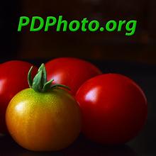 PDPhoto.org | Recursos TIC de Apoyo a la Docencia | Scoop.it