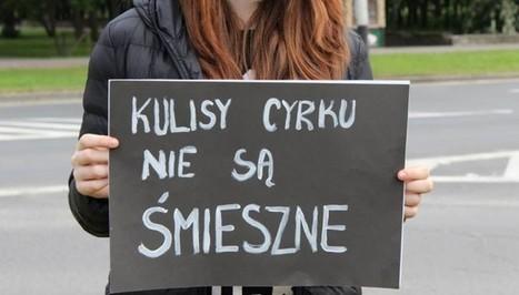 Wrocław wolny od cyrków ze zwierzętami | Trybuna.eu | Znalezione w Sieci | Scoop.it